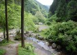 shiroiwa_03