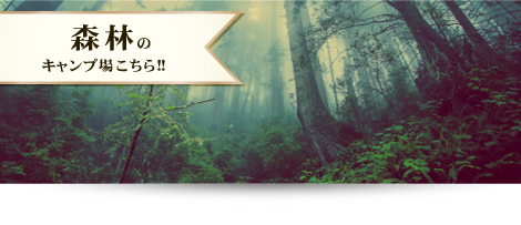 forest_banner_01