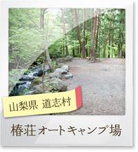 tsubaki_poto